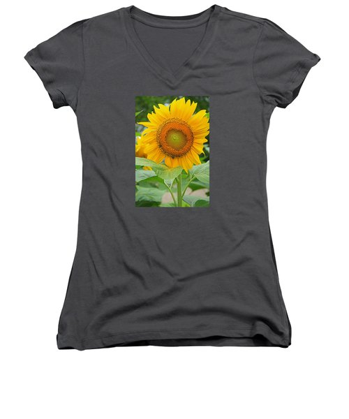 Sunflower Women's V-Neck (Athletic Fit)