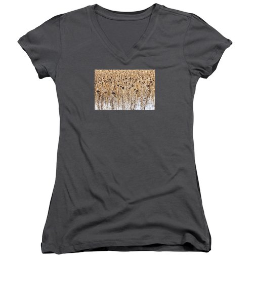 Sunflowers In Snow Women's V-Neck (Athletic Fit)