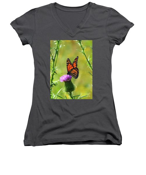 Sunlit Monarch  Women's V-Neck