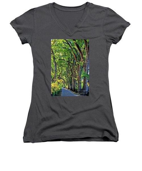 Sunlit Path Women's V-Neck T-Shirt (Junior Cut) by Gina Savage