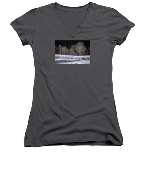 Sunlit Trees Women's V-Neck (Athletic Fit)