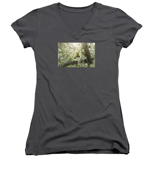 Sunrise Blossoms Women's V-Neck T-Shirt (Junior Cut) by Mary Angelini