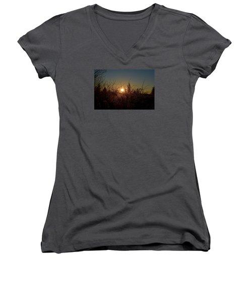 Sunrise Thru The Brush Women's V-Neck T-Shirt (Junior Cut) by Dacia Doroff