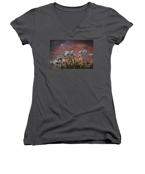 Sunset And Daisies Women's V-Neck