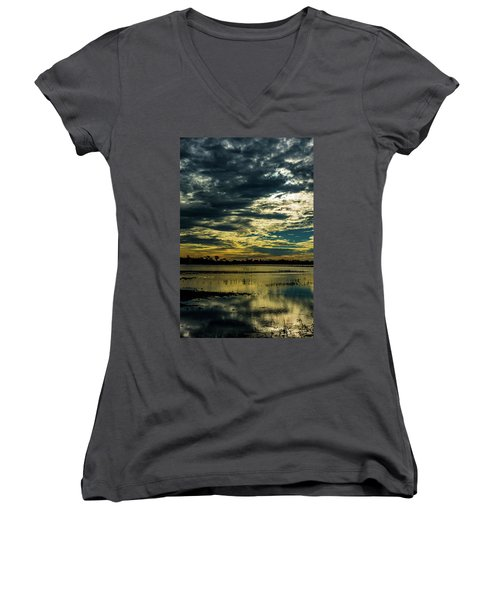 Sunset At The Wetlands Women's V-Neck (Athletic Fit)