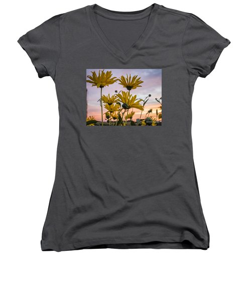 Sunset Delight Women's V-Neck T-Shirt