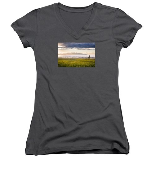 Sunset Eagle Women's V-Neck T-Shirt