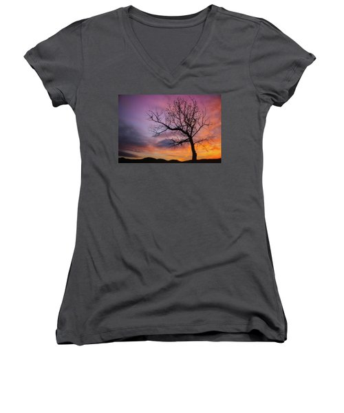 Sunset Tree Women's V-Neck T-Shirt (Junior Cut) by Darren White
