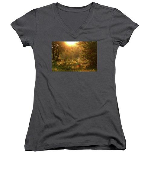 Sunshine In The Meadow Women's V-Neck T-Shirt (Junior Cut) by Emanuel Tanjala