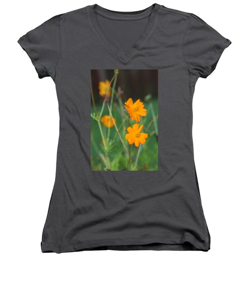 Sunshine To The Mind Women's V-Neck T-Shirt (Junior Cut) by Vadim Levin