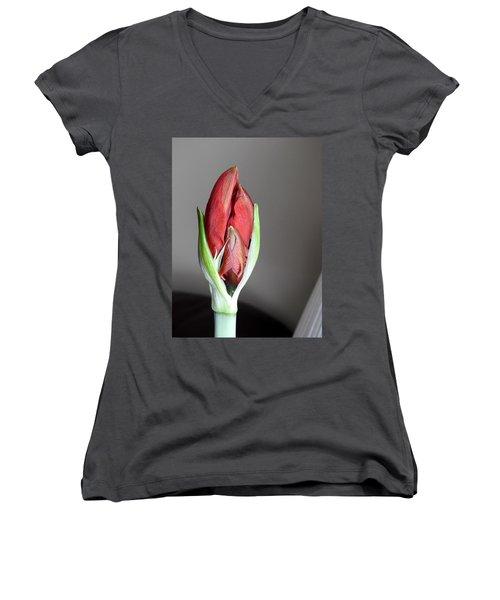 Super Bud Women's V-Neck T-Shirt