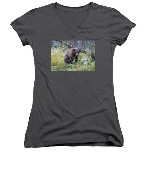 Surprised Bear Women's V-Neck T-Shirt (Junior Cut) by Scott Warner
