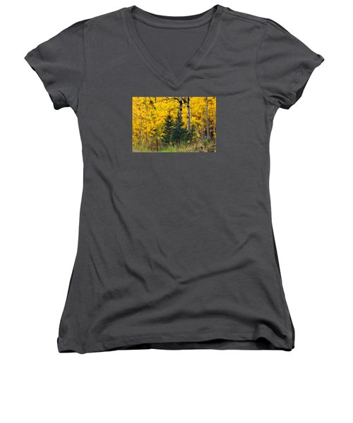 Surrounded By Gold Women's V-Neck T-Shirt (Junior Cut) by Diane Alexander