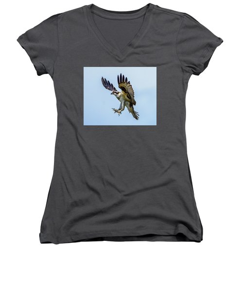 Suspended Osprey Women's V-Neck T-Shirt (Junior Cut) by Jerry Cahill