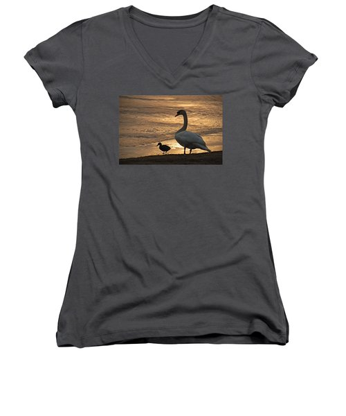 Women's V-Neck T-Shirt (Junior Cut) featuring the photograph Swan And Baby At Sunset by Richard Bryce and Family