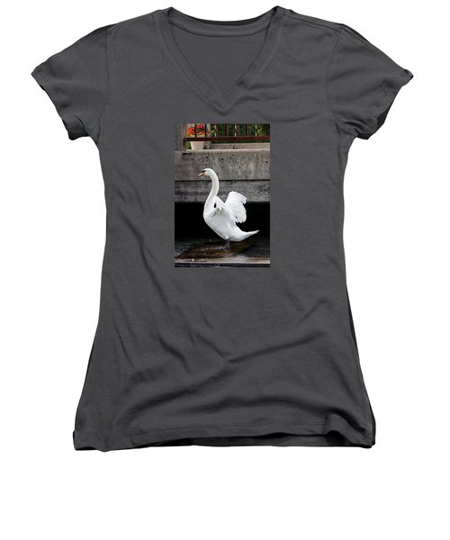 Swan At The Bridge Women's V-Neck (Athletic Fit)