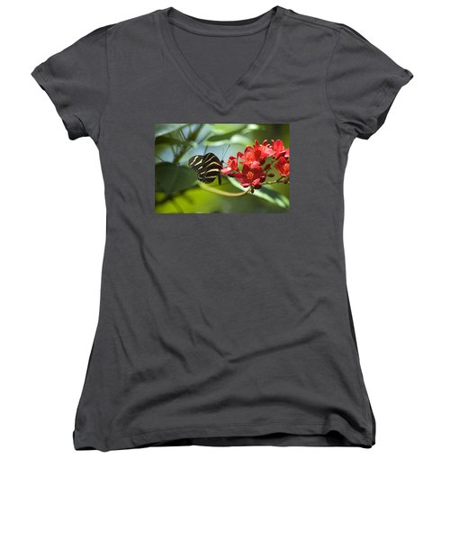 Sweet Nectar Women's V-Neck (Athletic Fit)