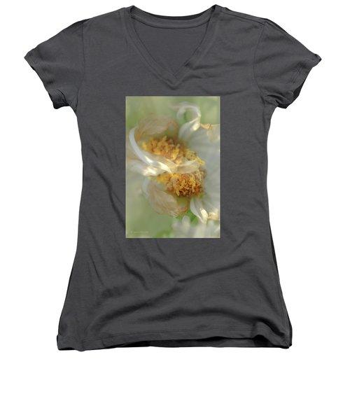 Flower Swirl.... Women's V-Neck