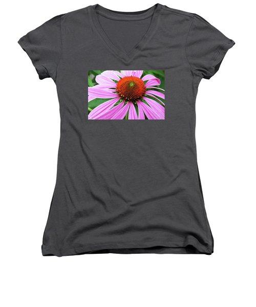 Swirling Purple Cone Flower 3576 H_2 Women's V-Neck T-Shirt