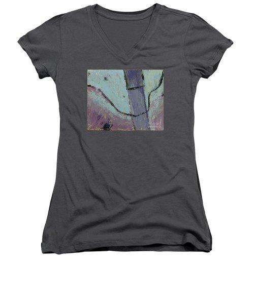 Swiss Roof Women's V-Neck T-Shirt