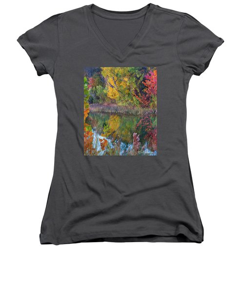 Sycamores And Willows Women's V-Neck T-Shirt (Junior Cut) by Tim Fitzharris