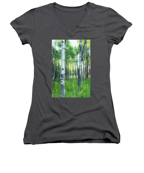 Tahoe Birch Women's V-Neck (Athletic Fit)