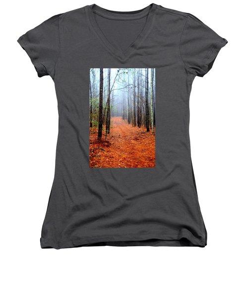 Taking A Stroll Women's V-Neck T-Shirt