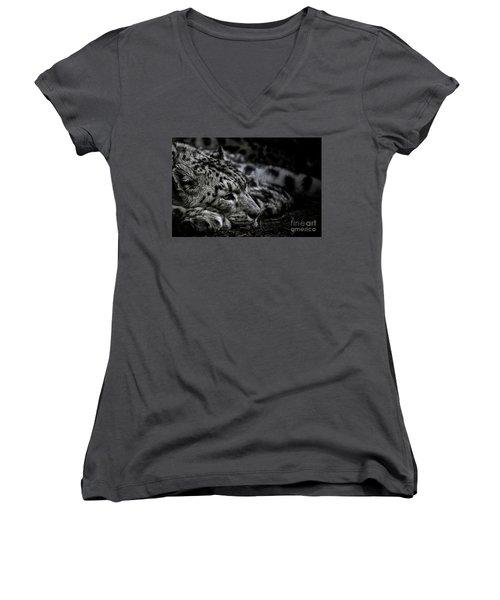 Taking A Break Women's V-Neck T-Shirt (Junior Cut) by Brad Allen Fine Art