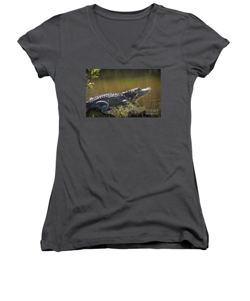 Taking In The Sun Women's V-Neck (Athletic Fit)
