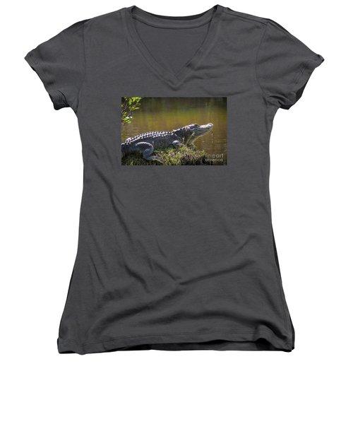 Taking In The Sun Women's V-Neck T-Shirt