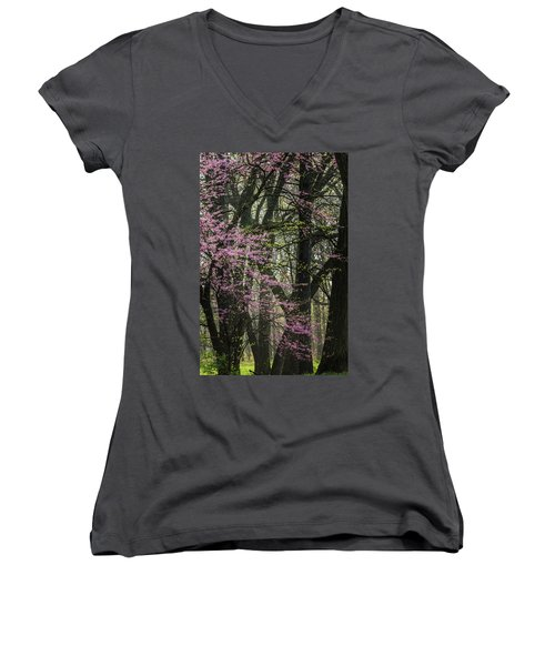 Tall Red Buds In Spring Women's V-Neck T-Shirt (Junior Cut) by Joni Eskridge