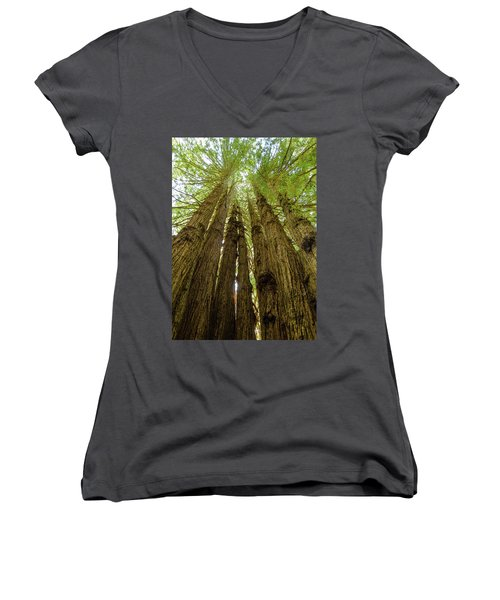 Tall Trees Women's V-Neck (Athletic Fit)