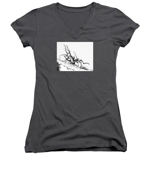 Tangled Women's V-Neck T-Shirt (Junior Cut) by Alan Raasch