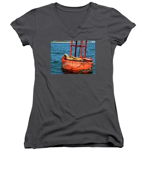 Women's V-Neck T-Shirt (Junior Cut) featuring the photograph Tanning Sea Lion On Buoy by Mariola Bitner
