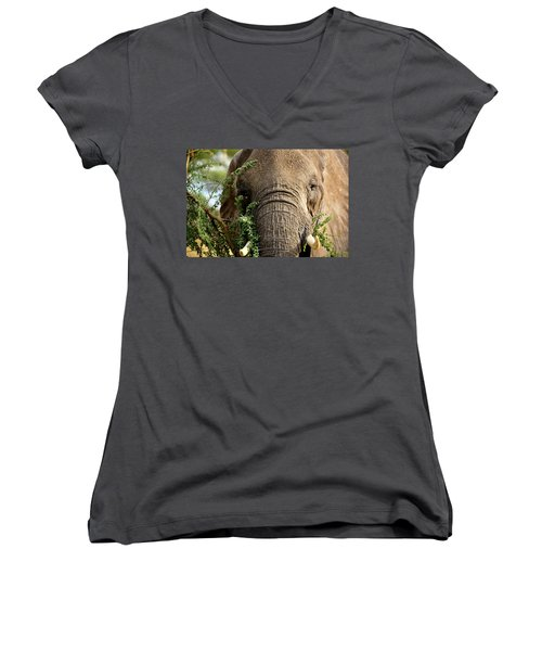Tarangire 5 Women's V-Neck T-Shirt