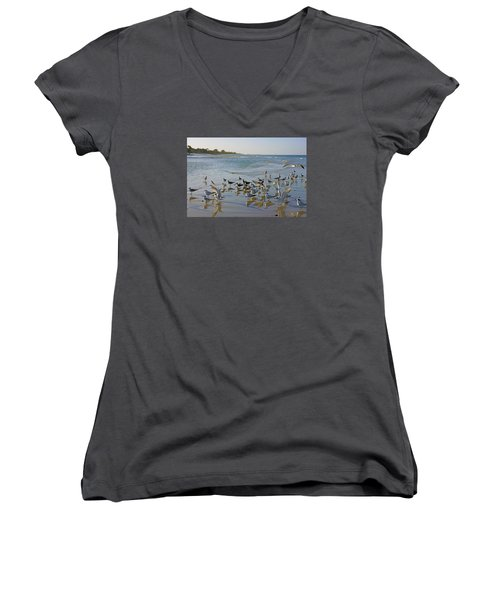 Women's V-Neck T-Shirt (Junior Cut) featuring the photograph Terns And Seagulls On The Beach In Naples, Fl by Robb Stan