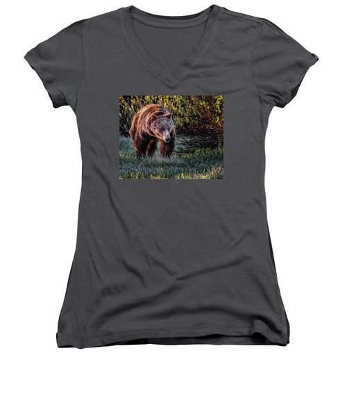 Teton Grizzly Women's V-Neck