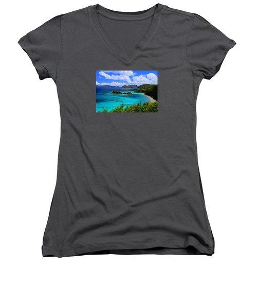 Thank You St. John Usvi Women's V-Neck T-Shirt (Junior Cut) by Fiona Kennard