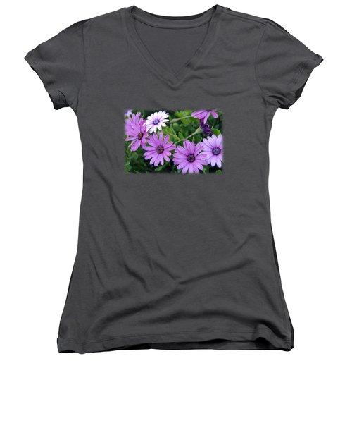 The African Daisy T-shirt 4 Women's V-Neck T-Shirt (Junior Cut) by Isam Awad