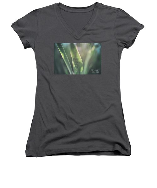 The Allotment Project - Sweetcorn Leaves Women's V-Neck