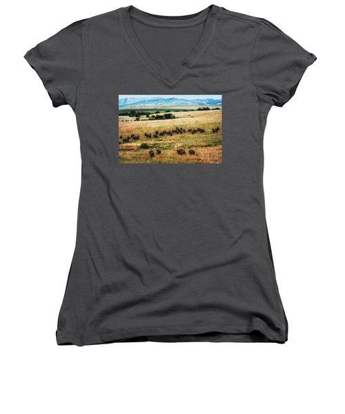 The American Bison Herd Women's V-Neck T-Shirt