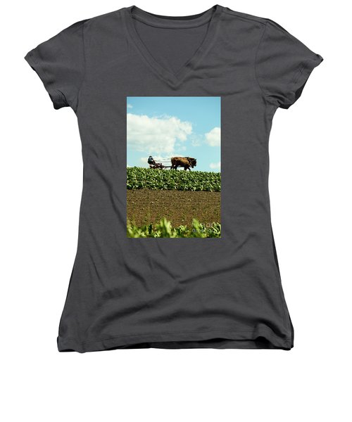 The Amish Farmer With Horses In Tobacco Field Women's V-Neck