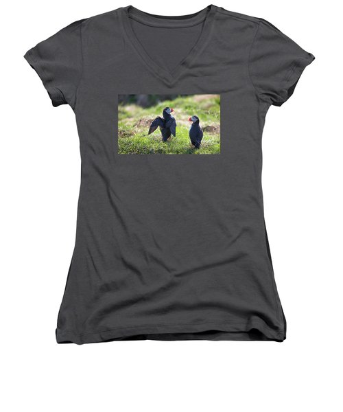 The Angel Puffin Women's V-Neck T-Shirt (Junior Cut)