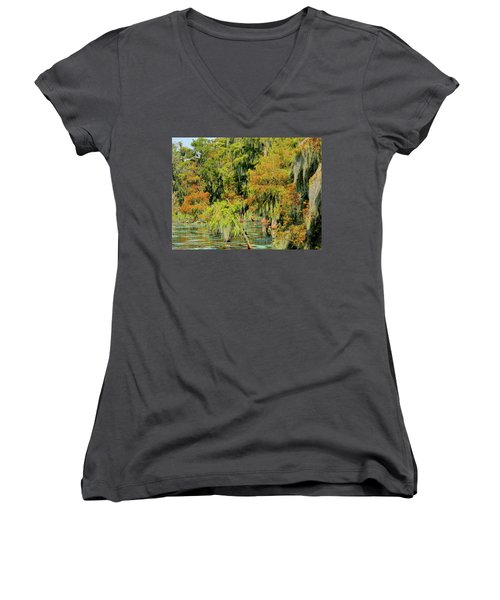 The Autumn Cometh Women's V-Neck (Athletic Fit)
