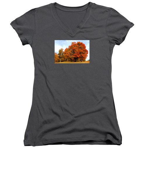 Women's V-Neck T-Shirt (Junior Cut) featuring the photograph The Beauty Of Autumn  by Michael Rucker