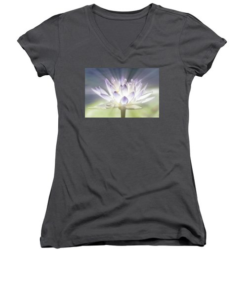 The Beauty Within Women's V-Neck T-Shirt (Junior Cut)