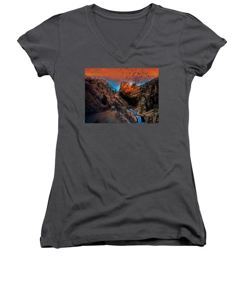 The Birds Of Window Rock Women's V-Neck T-Shirt (Junior Cut) by J Griff Griffin