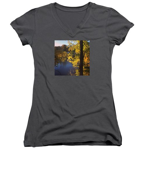 The Brilliance Of Nature Leaves Me Speechless Women's V-Neck T-Shirt (Junior Cut) by Jason Nicholas