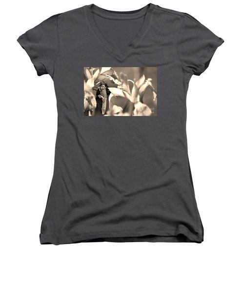 The Butterfly Women's V-Neck (Athletic Fit)