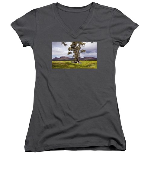 Women's V-Neck T-Shirt (Junior Cut) featuring the photograph The Cazneaux Tree by Bill Robinson